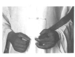 道家阴符派博客--道教手印大全—四御印 抱简--手印