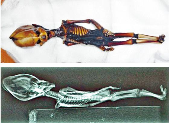 yinfupai--美国UFO记录片天狼星(SIRIUS)—智利发现的最小外星人尸体事件--传闻